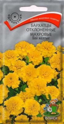 Бархатцы отклоненные махровые Бой желтые