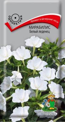 Мирабилис Белый леденец