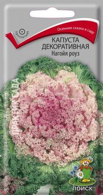Капуста декоративная Нагойя роуз