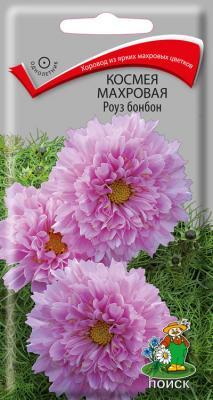 Космея махровая Роуз бонбон