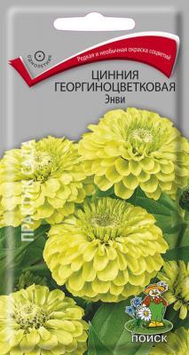 Цинния георгиноцветковая Энви